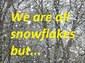 We are all snowflakes but ...